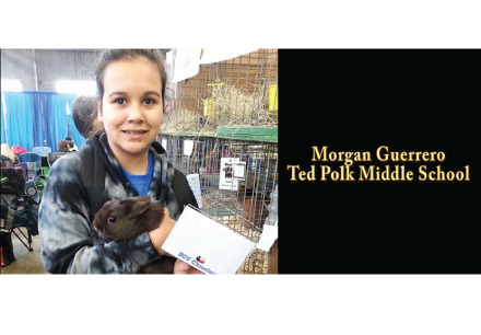 Ted Polk's FFA student Morgan Guerrero won 1st Place in two categories at the Ft. Worth Stock Show. Take a look at the clip abov