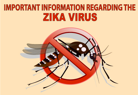 Important Information Regarding the Zika Virus